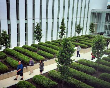 Photo of people visiting the courtyard at the Delegation of the Ismaili Imamat.
